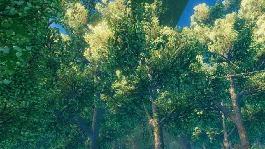 Как срубить дуб, сосну, березу и другие деревья в Valheim